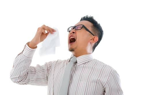 allergy4