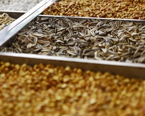nut seller roasted chickpeas and sunflower seeds